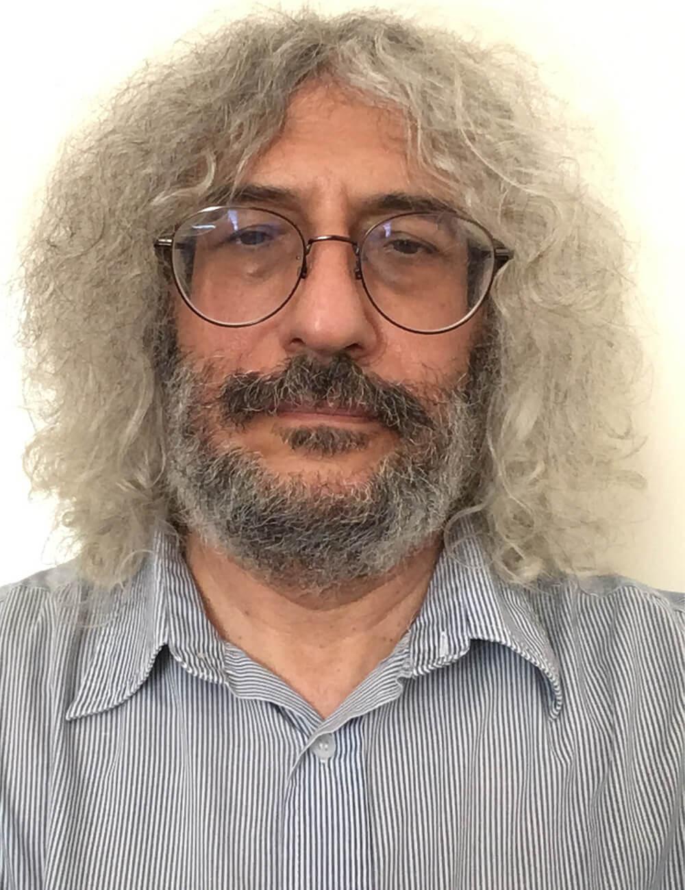 Григорий Месежников, Эксперт
