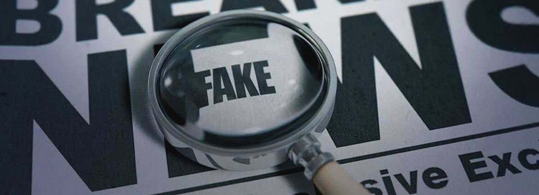 Economics of Disinformation and Propaganda