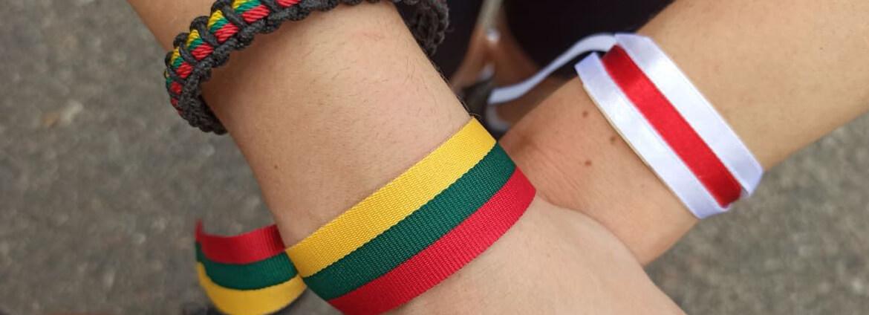 По стечению обстоятельств (дистопия белорусско-литовских отношений)